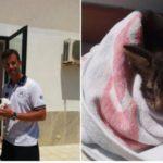 Charlie, il gattino salvato dalla Guardia costiera