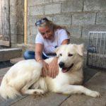 Il nuovo libro di Monica Pais su Mano, il cane che non voleva amare